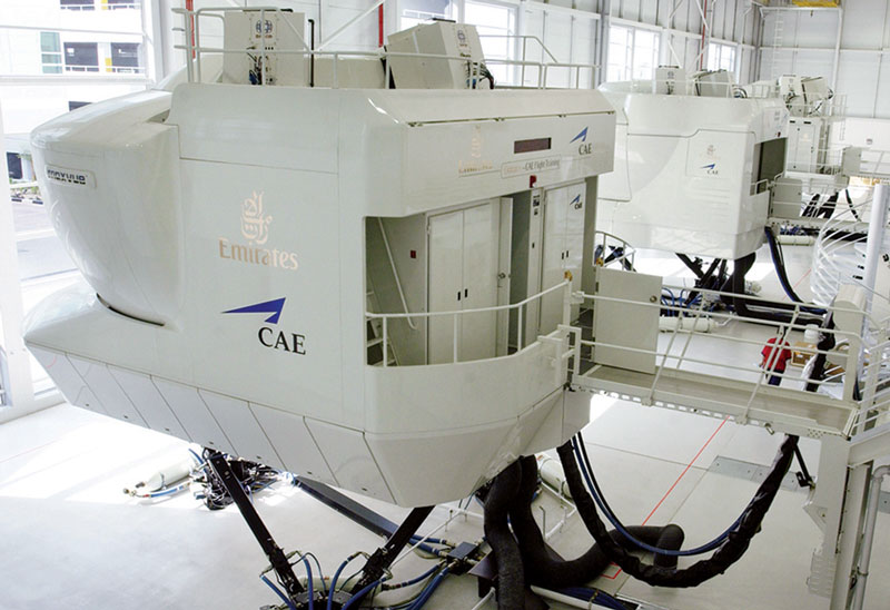 CEA Flight Simulator